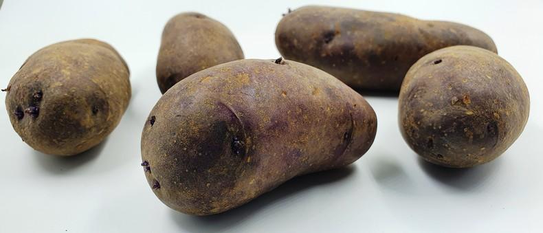 ботанические семена картофеля купить сарпо мира